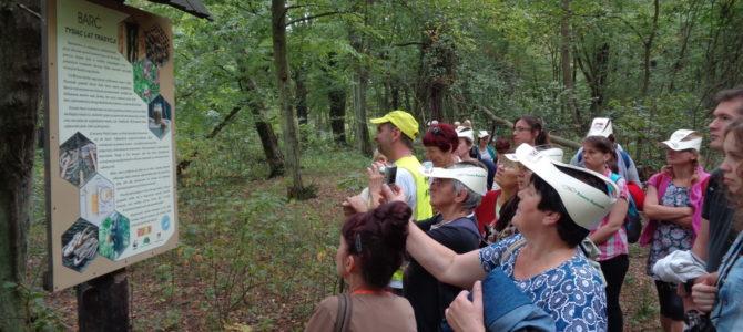 Odtwarzanie bartnictwa w Puszczy Pilickiej – wspólny projekt Piotrkowskiego TP oraz M-ŚTO
